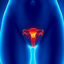 Secura Vaginal. O que é e como prevenir.